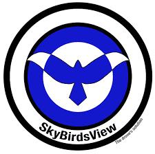 SkyBirdsView